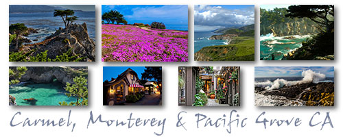 My Artist Loft Carmel, Monterey & Pacific Grove Weekend Watercolor & Ink Travel Journal & Photography Workshop